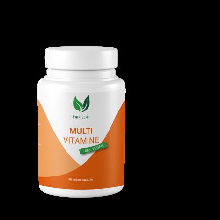 Vegan Multivitamine