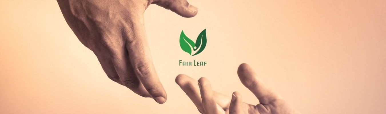 Missie Fair Leaf